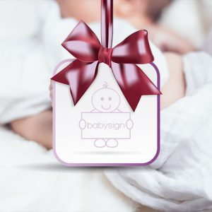 babysign bundle image